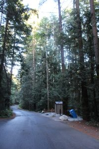 20160615-Camping Bamberton2