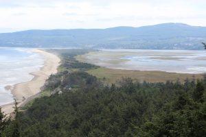 20160701-de Cape Lookout State Park à Neskowin23