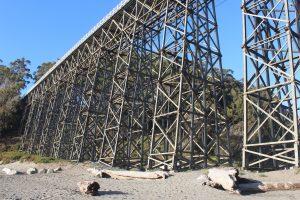 20160725- De Mackerricher State Park Cleone à Albion Navarro Beach State park, CA, USA15