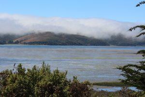 20160729- De Bodega Bay à Olema Campground, CA, USA11