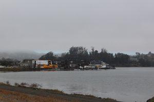 20160731- De MT Tamalpais State Park à San Francisco, CA, USA02