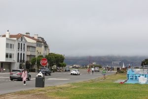 20160731- De MT Tamalpais State Park à San Francisco, CA, USA32